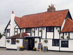 The Fox and Castle